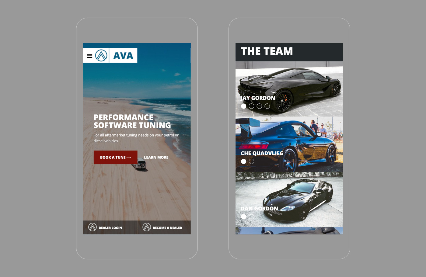 AVA Performance Software Tunes - Mobile screens